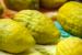 Hebrew: Beautifying Sukkot With an Etrog