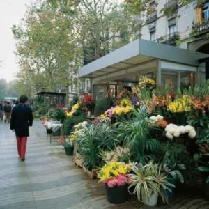 Las Ramblas. Photo courtesy of Tourist Office of Spain in New York.