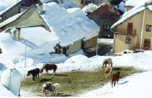 A small village in the Alps