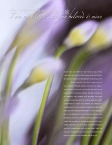 'African Lily'  by Daniel Sroka,. Copyright Daniel Sroka, www.modernketubah.com.