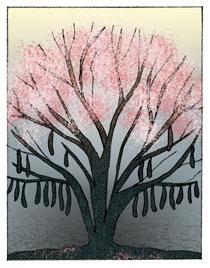 Illustration by Christianne Grauert