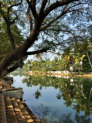 The backwaters of Kochi. All photos by Rahel Musleah.