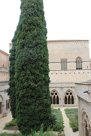 The monastery cloister.